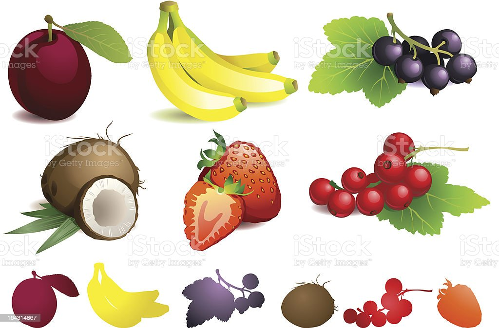 diffrent fruits with leaves vector art illustration