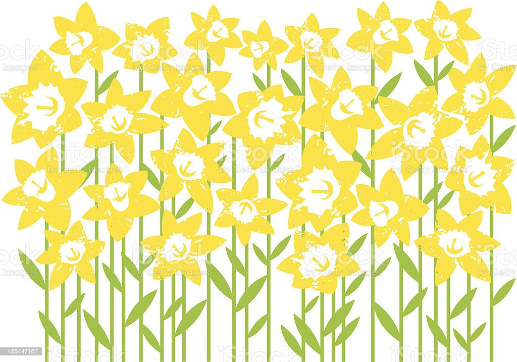 Digital artwork of a field of daffodils isolated on white royalty-free stock vector art