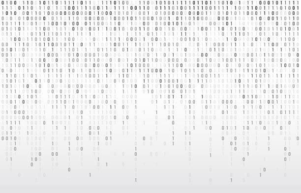 ilustrações, clipart, desenhos animados e ícones de código binário digital. fluxo de computador matriz dados números caindo, codificação de códigos e tipografia ilustração de fundo vector cinza - code