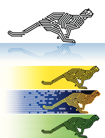 digital cheetah