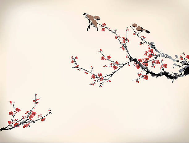Digital drawing of birds in a Japanese cherry tree in winter birds and winter sweet plum blossom stock illustrations