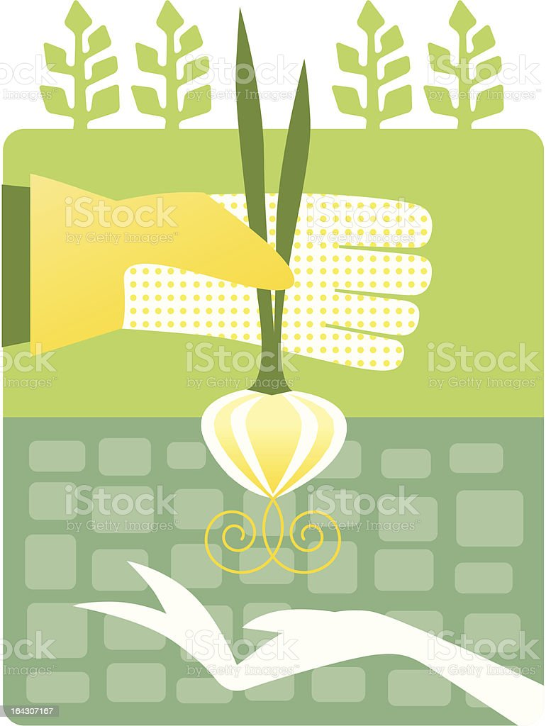 Digital drawing of man with glove handing over a produce royalty-free stock vector art