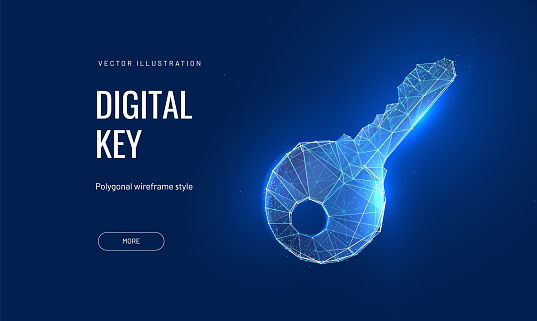 Digital key in a futuristic polygonal style. Vector abstract illustration of blockchain technologies
