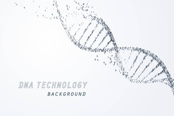 Digital of DNA virtual, technology and medical concept Digital of DNA virtual, technology and medical concept, vector art and illustration. dna stock illustrations