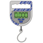 Digital Portable Weighing Scale