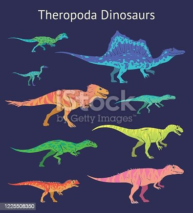 Set of theropoda dinosaurs. Colorful vector illustration of dinosaurs isolated on blue background. Side view. Theropods. Proportional dimensions. Element for your desing, blog, journal