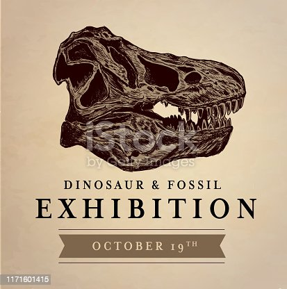 Vector illustration of a Dinosaur and fossil exhibition museum design with t-rex skull. tyrannosaurus rex or T-Rex dinosaur bone skull head in sketch style. Dinosaur fossil archaeology. Side profile. Vector eps 10.