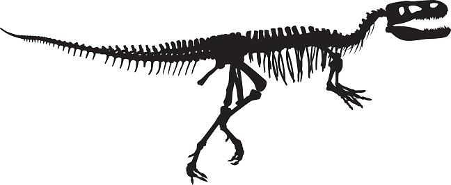 Dinosaur Bones Silhouette