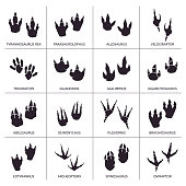 Vector Illustration with a complete Black and White Footprints Icons Set