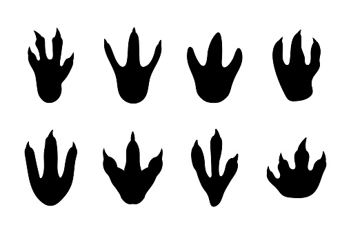 Dinosaur footprints collection. Black silhouette of ancient animal foot. Dinosaur traces. Vector image