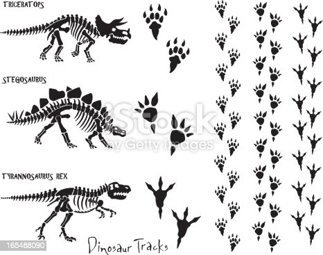 Dinosaur skeletons and foot prints. All elements are grouped for easy separation. Check out my