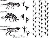 Dinosaur Skeleton & Footprints