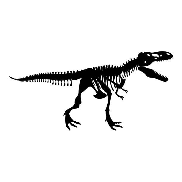 dinosaur skeleton t rex icon black color illustration flat style simple image - animal skeleton stock illustrations
