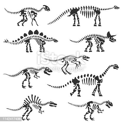 Dinosaur skeletons set. Dinosaur bones silhouettes, isolated objects. Velociraptor, Diplodocus, Triceratops, Tyrannosaurus, ect. Vector illustration