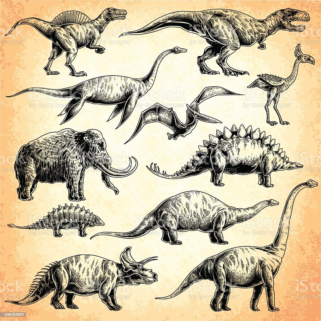 dinosaurs set vector art illustration
