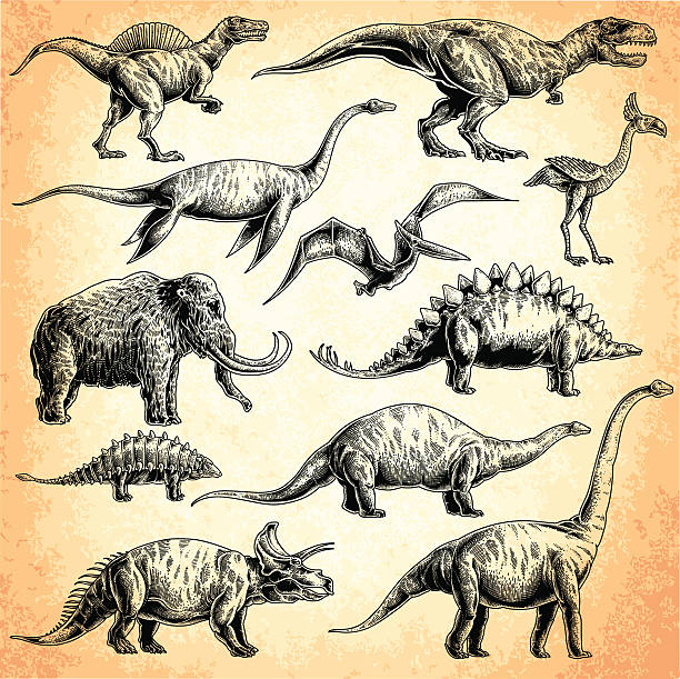 dinosaurs set - dinosaur stock illustrations, clip art, cartoons, & icons