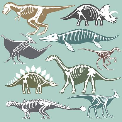Dinosaurs skeletons silhouettes set fossil bone tyrannosaurus prehistoric animal dino bone vector flat illustration