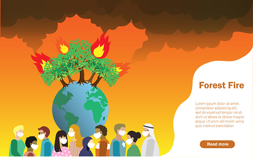 Disaster from forest fire, wildfire making air pollution and destroy forest.