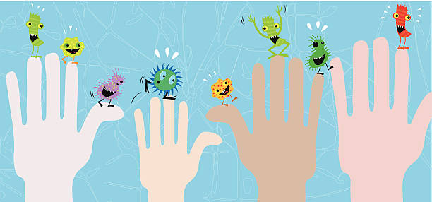 Diseases transmisson Wash your hands and avoid those little creatures! unhygienic stock illustrations