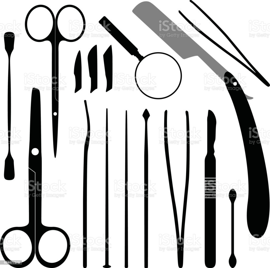 Dissection Tools Equipment and Kits vector art illustration
