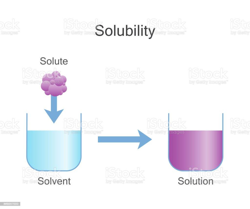Dissolving Solids. Solubility Chemistry. vector art illustration