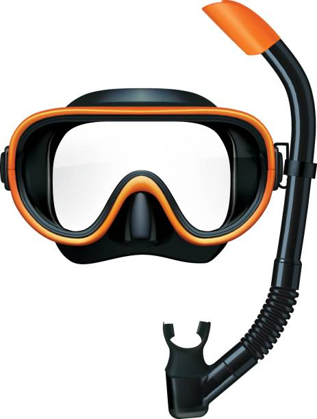 Dive mask and snorkel for professionals. Vector illustration Dive mask and snorkel for professionals. Vector illustration swimming goggles stock illustrations