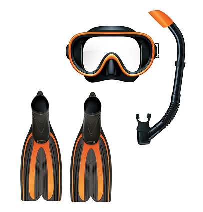 Dive mask, snorkel and pair of flippers. Vector illustration