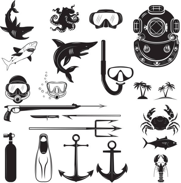 Diver design elements. Diver weapon, diver helmet, equipment Diver design elements. Diver weapon, diver helmet, equipment for diving.  Design element for poster, flyer, emblem, sign.  Vector illustration. loon bird stock illustrations