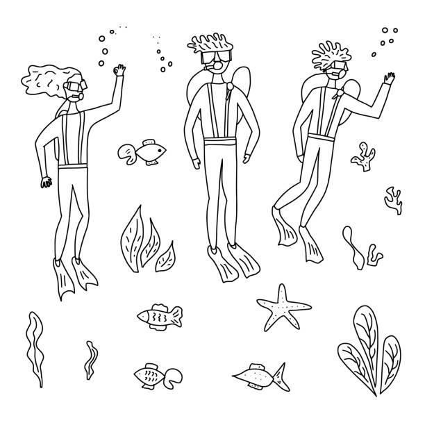 illustrazioni stock, clip art, cartoni animati e icone di tendenza di divers with underwater fish and plant. vector set. - frogman