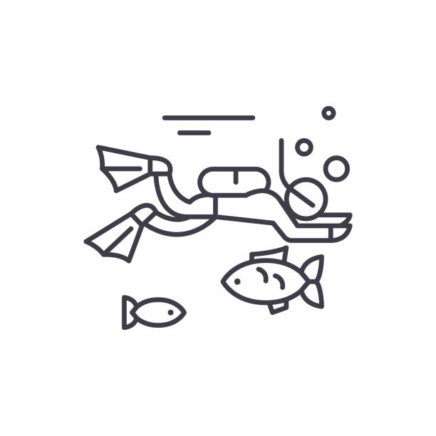 Diving line icon concept. Diving vector linear illustration, symbol, sign Diving line icon concept. Diving vector linear illustration, sign, symbol diving into water stock illustrations