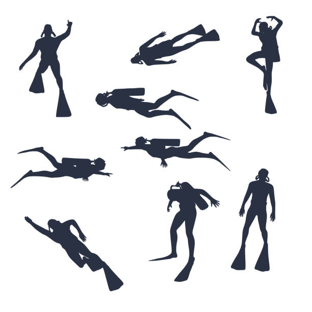 bildbanksillustrationer, clip art samt tecknat material och ikoner med dykning sport koncept - akvatisk organism