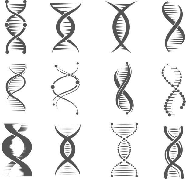 dna spiral icons. helix human technology research molecule and chromosome medical and pharmaceutical vector symbols - snail stock illustrations