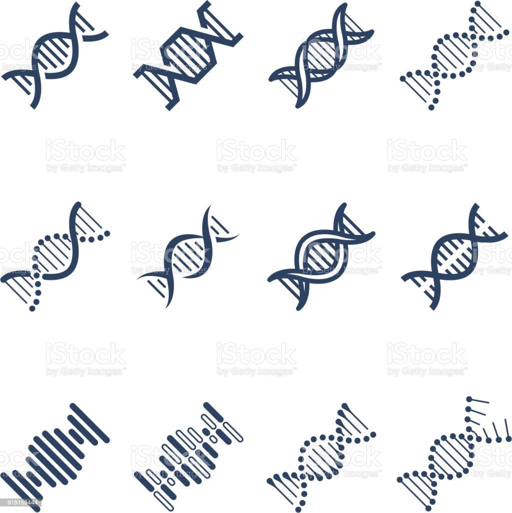 Ilustración De Dna Espiral Molécula Estructura Vector Iconos Investigación Genética Y Cromosomas Símbolos De Ingeniería Y Más Vectores Libres De