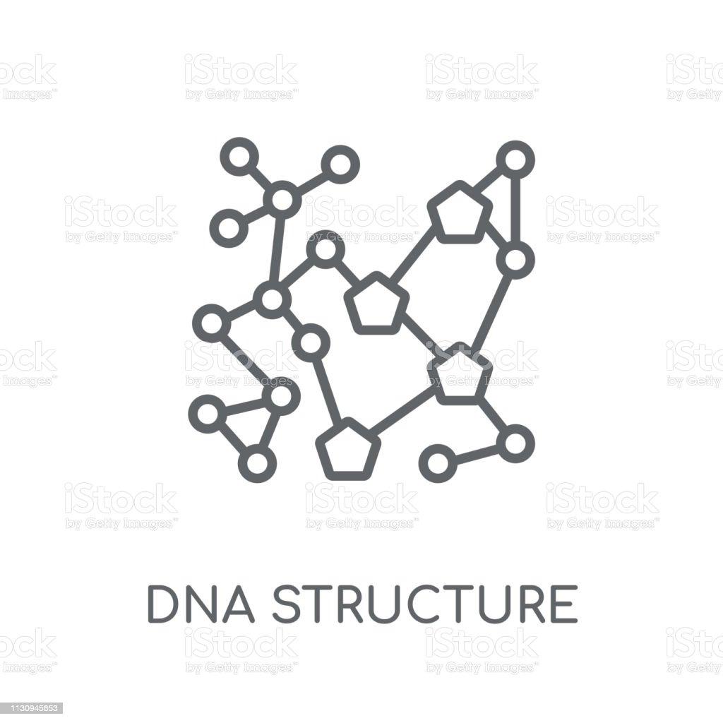 Ilustración De Estructura De Adn Icono Lineal Concepto De