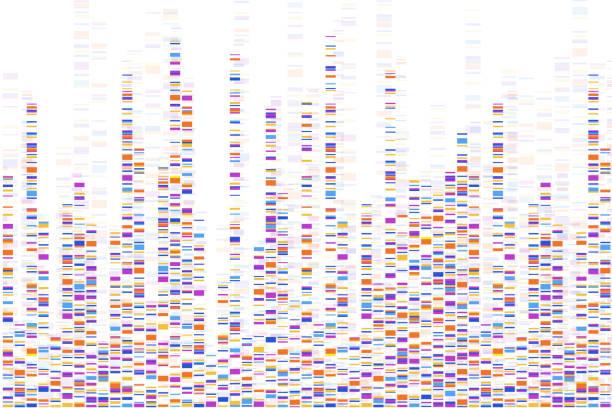 ilustraciones, imágenes clip art, dibujos animados e iconos de stock de infografía de la prueba de adn. ilustración vectorial. mapa de secuencia del genoma. plantilla para su diseño. fondo, fondo de pantalla. barras. visualización de big genomic data - adn