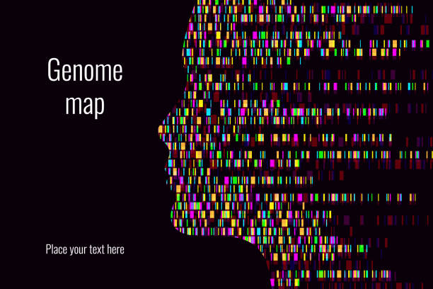 Dna test infographic. Vector illustration. Genome sequence map. Template for your design. Background, wallpaper. Barcoding. Big Genomic Data Visualization Dna test infographic. Vector illustration. Genome sequence map. Template for your design.Dna test infographic. Vector illustration. Genome sequence map. Template for your design. chromosome stock illustrations