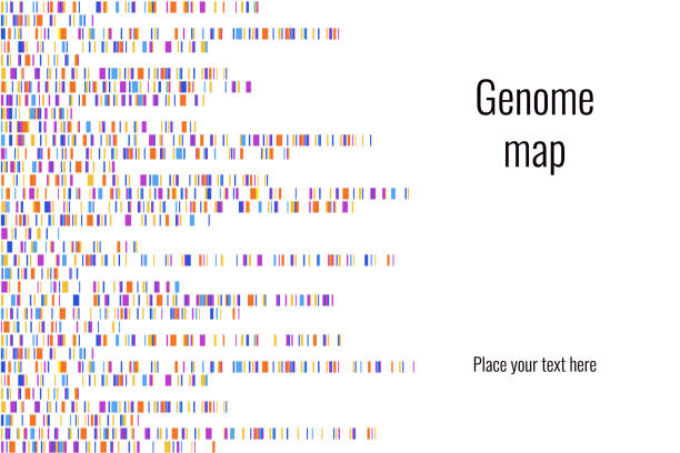 dna test infographic. vector illustration. genome sequence map. template for your design. background, wallpaper. barcoding. big genomic data visualization - genetics stock illustrations, clip art, cartoons, & icons