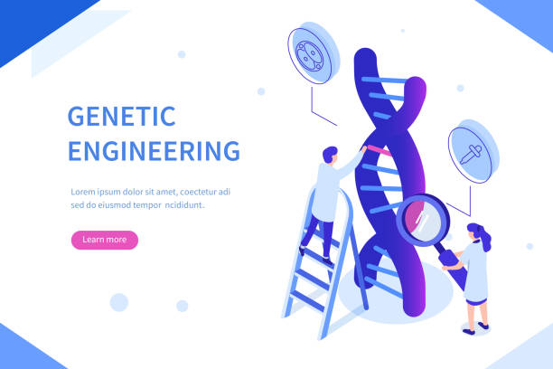 dna Genetic scientists edit DNA. Can use for web banner, infographics, hero images. Flat isometric vector illustration isolated on white background. genomics stock illustrations