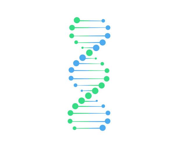 Dna vector.Gen symbol illustration Dna vector.Gen symbol illustration dna stock illustrations