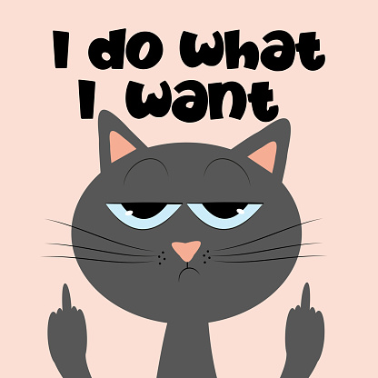 I do what I want- funny text with grimacing cat.