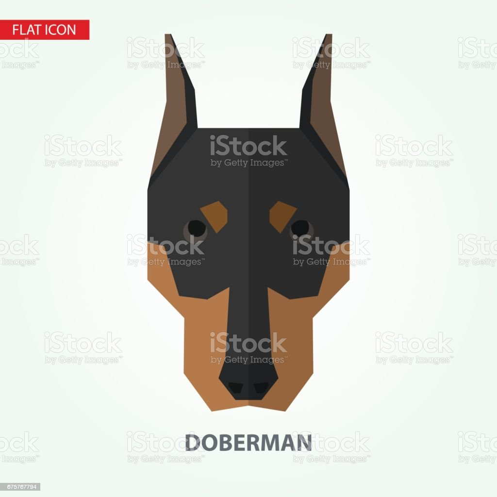 Doberman head vector illustration. vector art illustration