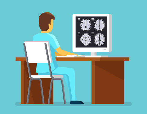 Doctor researches results of MRI scan Doctor researches results of MRI scan. Health and care vector concept. Brain scan, research brain mri professional illustration radiology stock illustrations