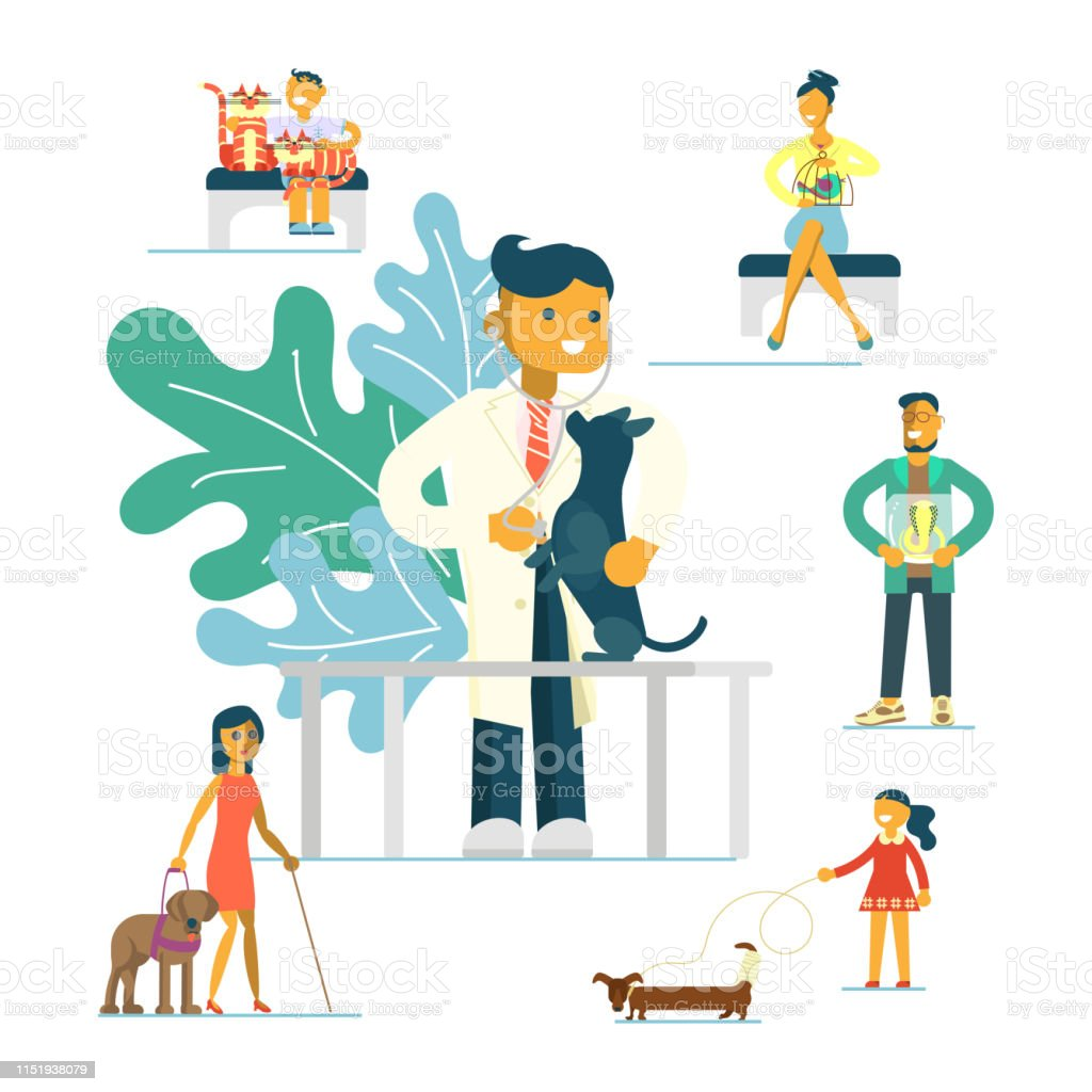 Veterinary clinic concept. Turn to the veterinarian. Doctor treats a...