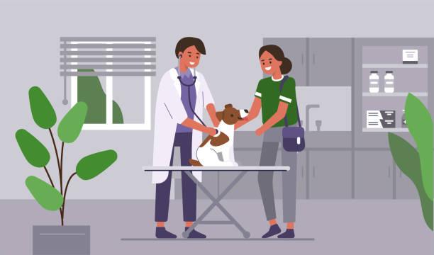 bildbanksillustrationer, clip art samt tecknat material och ikoner med läkare veterinär - djursjukhus