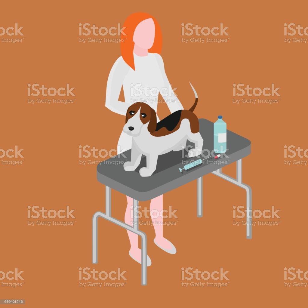 Médico con perro. Clínica veterinaria. Perro de curación de dibujos animados mujer veterinario. Enfermera de animales. - ilustración de arte vectorial