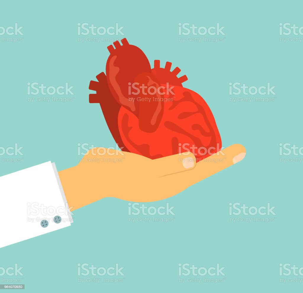 doctor's hand holding human heart on background, vector illustration concept for health care and medical - Royalty-free Adult stock vector