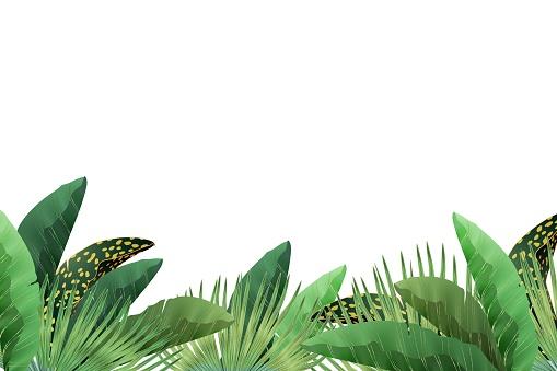 dodelat jungl leaves
