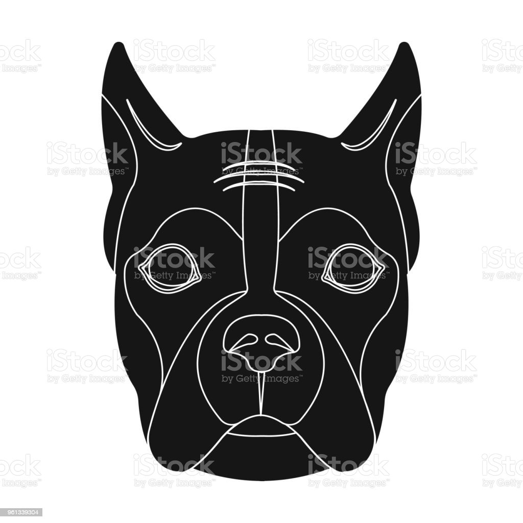 A dog, a breed of boxer.Muzzle of a boxer single icon in black style vector symbol stock illustration web. vector art illustration