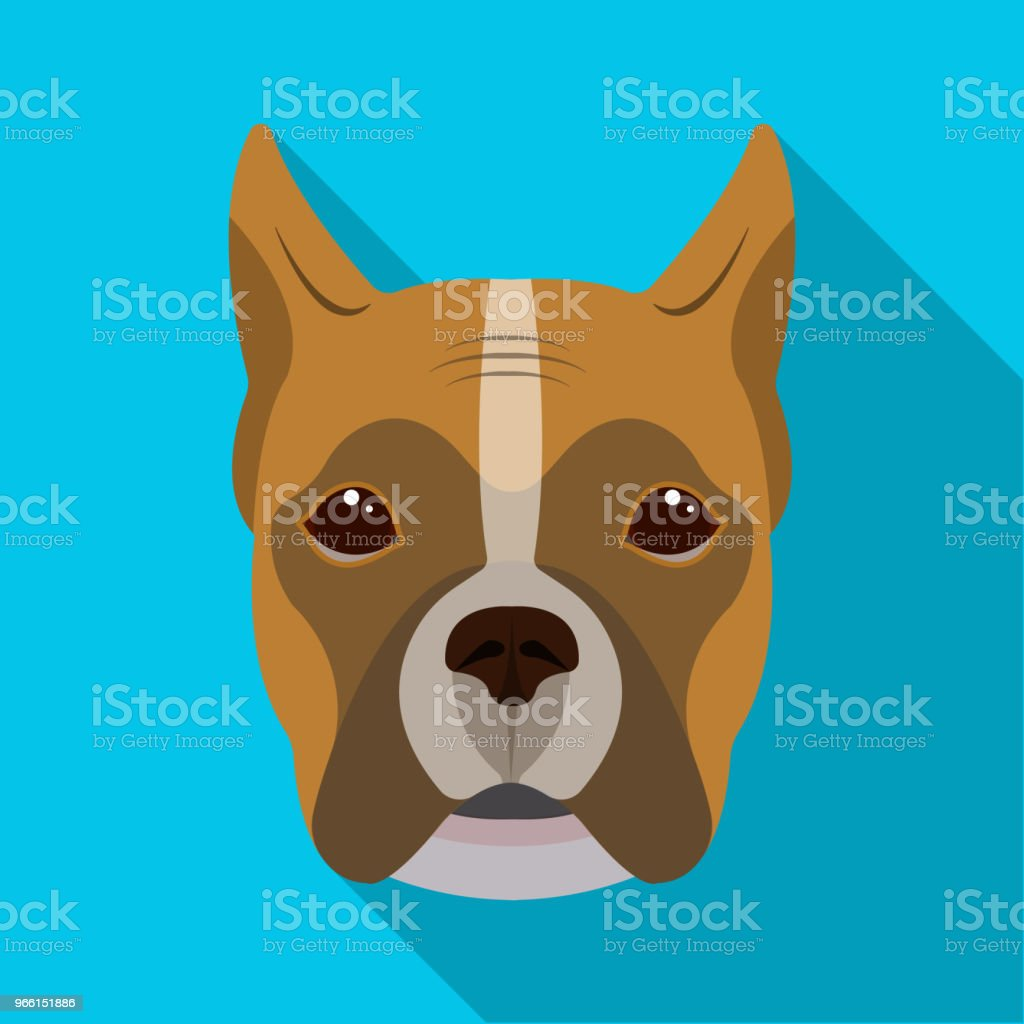 A dog, a breed of boxer.Muzzle of a boxer single icon in flat style vector symbol stock illustration web. - arte vettoriale royalty-free di Animale