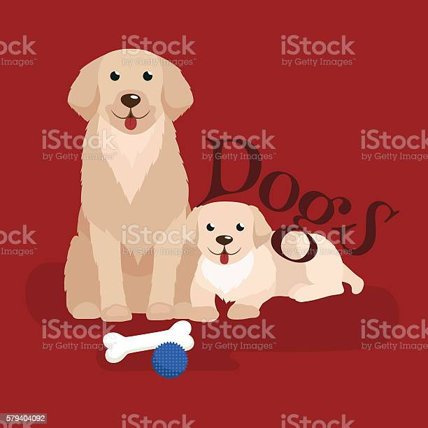 Dog adorable pets background domestic animal vector illustration vector id579404092?b=1&k=6&m=579404092&s=612x612&h=xmxmy4hripmotk8owoj3whtytdcyxw2ewpwt7wxbwmo=